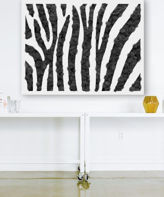 textura-design-cabinet-avocat