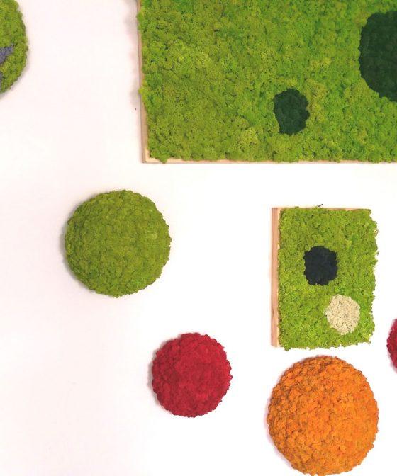 semisfere2-deco-licheni-green-office