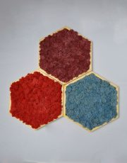 Mossai Play tablou hexagon licheni