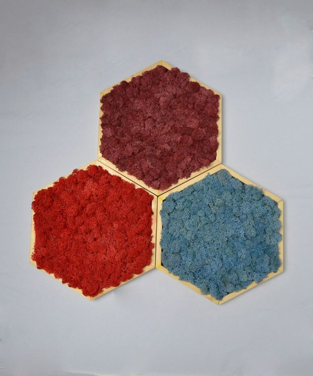 Hexagoane Mossai Play - Decoraţiune tablou din licheni naturali
