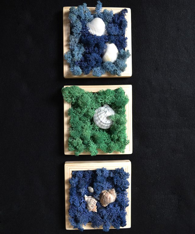 Shells - Tablou marin pentru baie cu licheni naturali