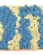 Mossai • Blue Lagoon - Decoraţiuni pentru casă din muşchi şi licheni naturali