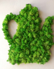 Ceainic - Decorațiune din licheni naturali