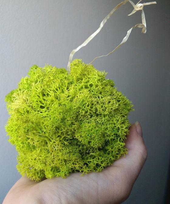 Glob de Crăciun din licheni